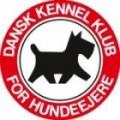 DKK logo